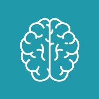 Brain200